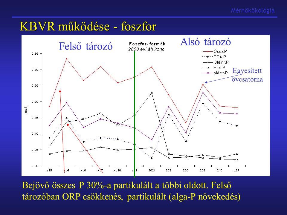 Mérnökökológia KBVR működése - foszfor Bejövő összes P 30%-a partikulált a többi oldott. Felső tározóban ORP csökkenés, partikulált (alga-P növekedés)