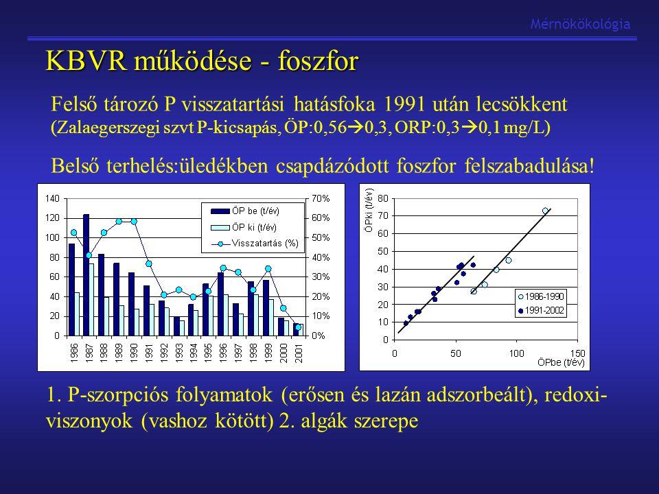 Mérnökökológia KBVR működése - foszfor Felső tározó P visszatartási hatásfoka 1991 után lecsökkent (Zalaegerszegi szvt P-kicsapás, ÖP:0,56  0,3, ORP:0,3  0,1 mg/L) Belső terhelés:üledékben csapdázódott foszfor felszabadulása.