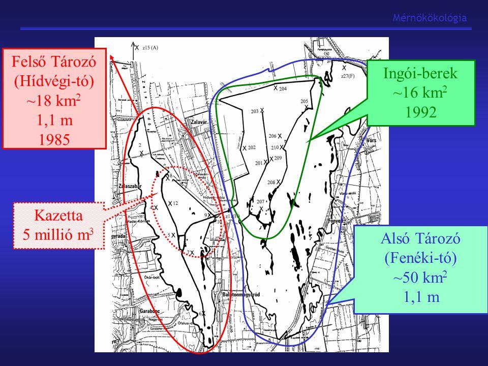 """Mérnökökológia Nyílt víz, alga dominancia Lebegőanyag """"növelő hatás (alga) Jó fény és oxigénellátottság P: adszorpció, belső terhelés, partikulált alga-P N: nitrát csökkenés, partikulált N nő, N-kötés, ÖN nő KBVR működése –Felső- és Alsó tározó összehasonlítása Makrofita (nád) dominancia """"Ülepítő hatás, jó LA visszatartás Rossz fényviszonyok, alacsony oxigénszintek P: ülepedés, alga pusztulás, ORP kibocsátás N: partikulált N csökken, oldott szerves részaránya nő, ÖN csökkenés"""
