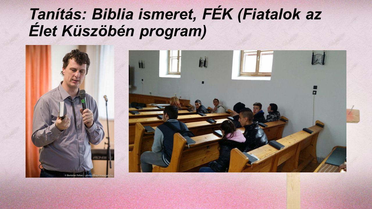 Lelkigondozás (diákok, tanárok, szülők) Családlátogatás Biblia osztás (Gedeon társaság) Munkatársak bevonása