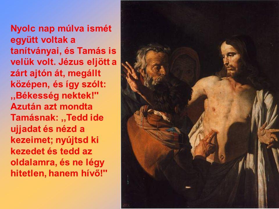 Dar el le ‑ a declarat: Ő azonban így szólt:,,Hacsak nem látom kezén a szegek nyomát, és ujjamat a szegek helyére nem teszem, és kezemet az oldalára nem helyezem, én nem hiszem!