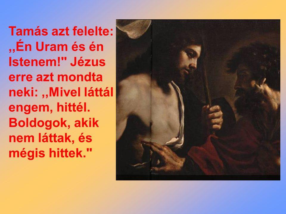 Tamás azt felelte:,,Én Uram és én Istenem! Jézus erre azt mondta neki:,,Mivel láttál engem, hittél.