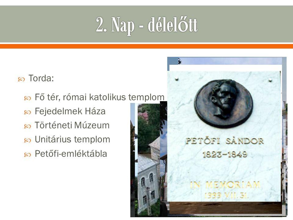  Torda:  Fő tér, római katolikus templom  Fejedelmek Háza  Történeti Múzeum  Unitárius templom  Petőfi-emléktábla