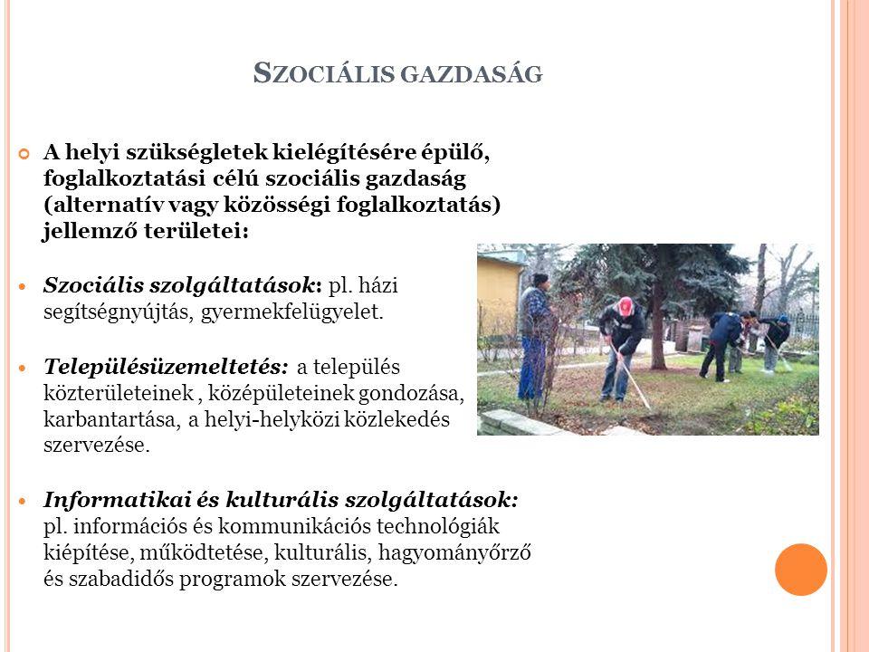 S ZOCIÁLIS GAZDASÁG A helyi szükségletek kielégítésére épülő, foglalkoztatási célú szociális gazdaság (alternatív vagy közösségi foglalkoztatás) jellemző területei: Szociális szolgáltatások: pl.