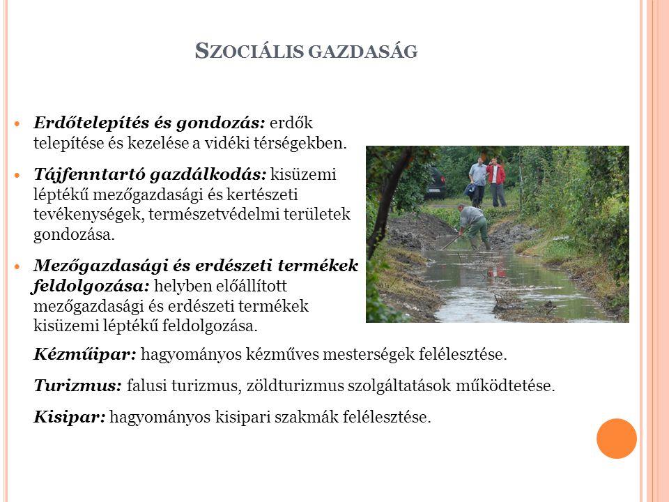 S ZOCIÁLIS GAZDASÁG Erdőtelepítés és gondozás: erdők telepítése és kezelése a vidéki térségekben.