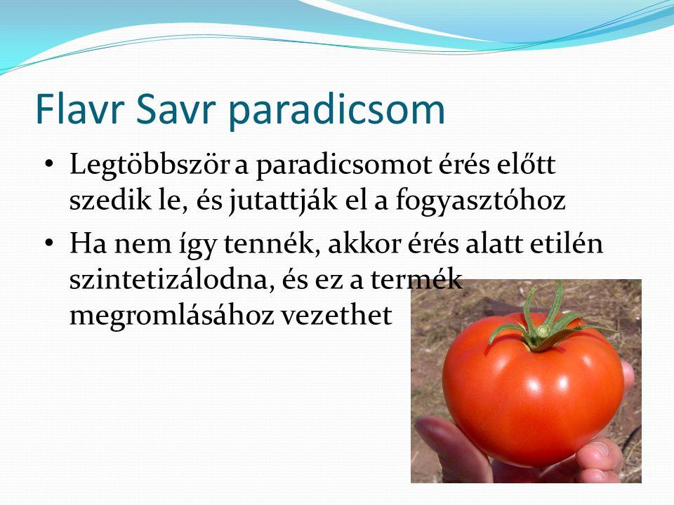Flavr Savr paradicsom Legtöbbször a paradicsomot érés előtt szedik le, és jutattják el a fogyasztóhoz Ha nem így tennék, akkor érés alatt etilén szint