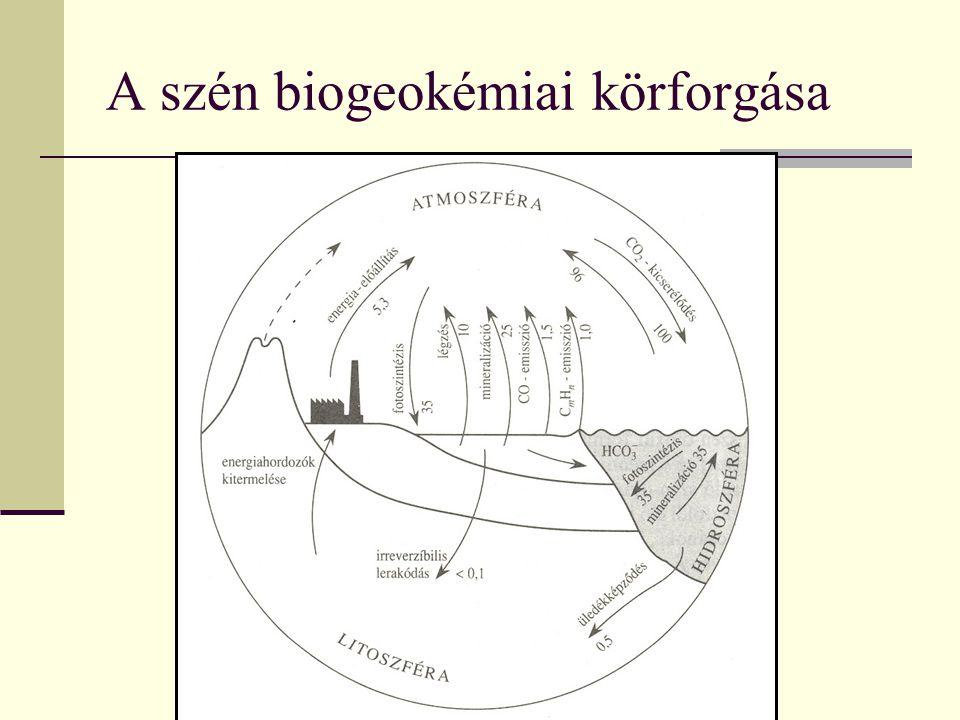 A szén biogeokémiai körforgása