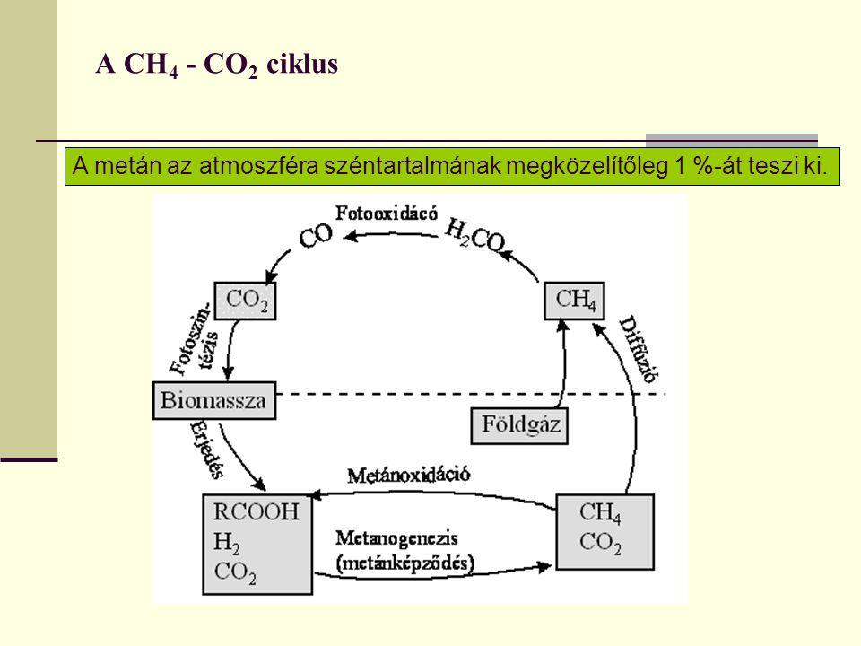 A CH 4 - CO 2 ciklus A metán az atmoszféra széntartalmának megközelítőleg 1 %-át teszi ki.
