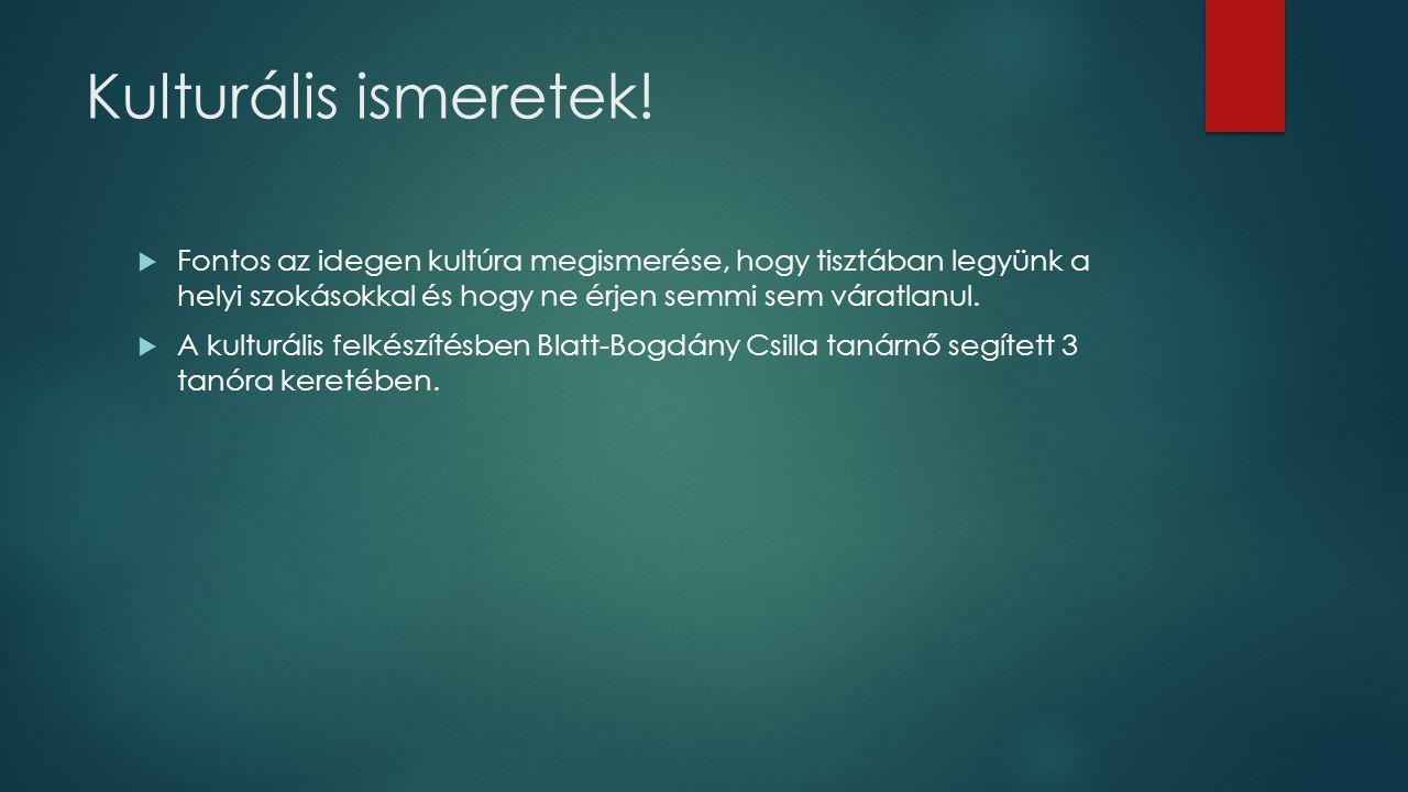 Informatikai felkészítés  A Dániában töltött idő és a gyakorlat bemutatására prezentációt és weblapot kell készítenünk.