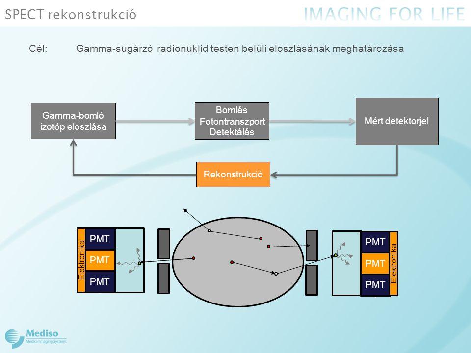 SPECT rekonstrukció Cél:Gamma-sugárzó radionuklid testen belüli eloszlásának meghatározása Mért detektorjel Bomlás Fotontranszport Detektálás Gamma-bomló izotóp eloszlása Rekonstrukció T PM T Elektronika PMT Elektronika T PM T Elektronika PMT Elektronika