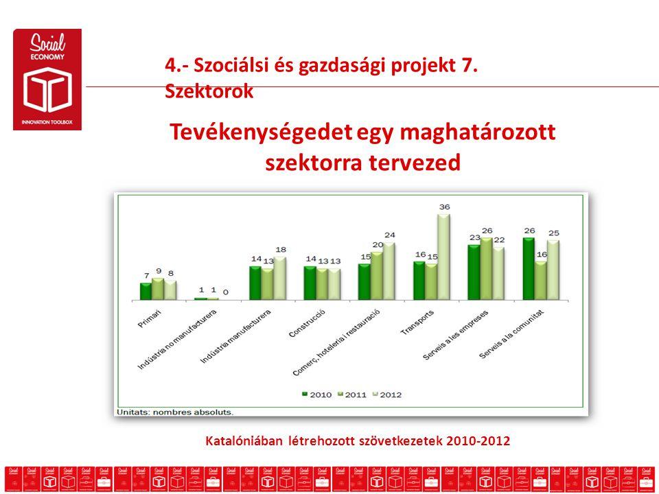 4.- Szociálsi és gazdasági projekt 7.