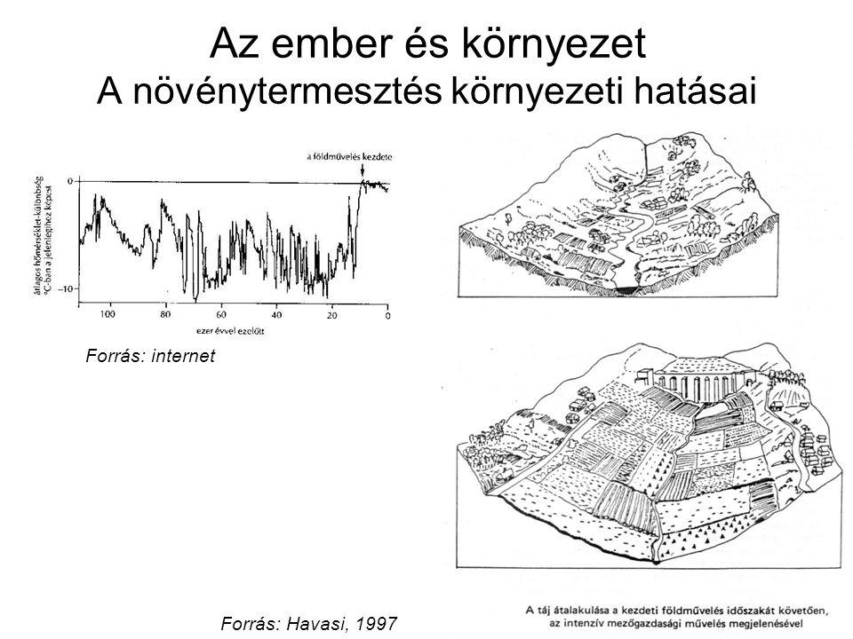 Az ember és környezet A növénytermesztés környezeti hatásai Forrás: Havasi, 1997 Forrás: internet