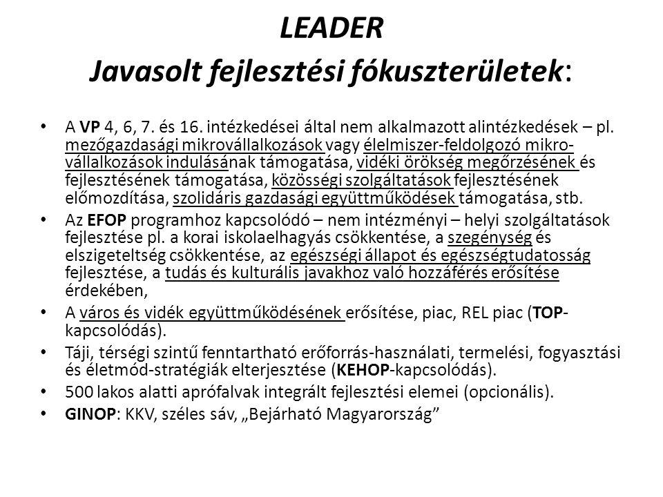 LEADER Javasolt fejlesztési fókuszterületek : A VP 4, 6, 7.