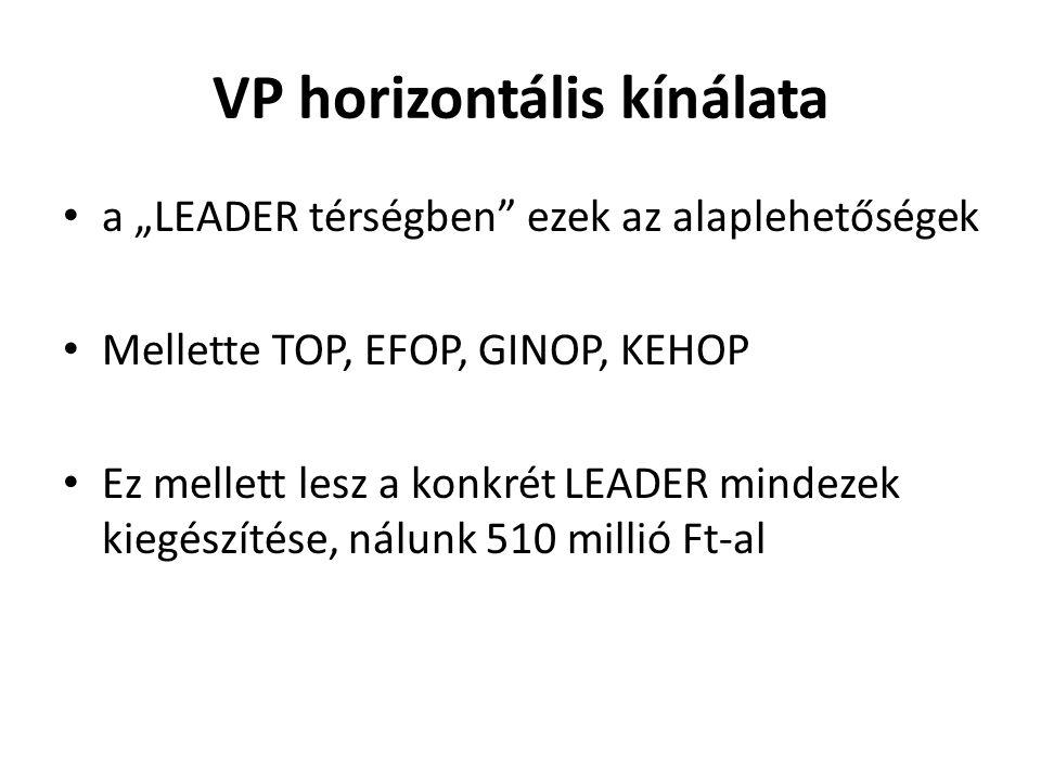 """VP horizontális kínálata a """"LEADER térségben ezek az alaplehetőségek Mellette TOP, EFOP, GINOP, KEHOP Ez mellett lesz a konkrét LEADER mindezek kiegészítése, nálunk 510 millió Ft-al"""