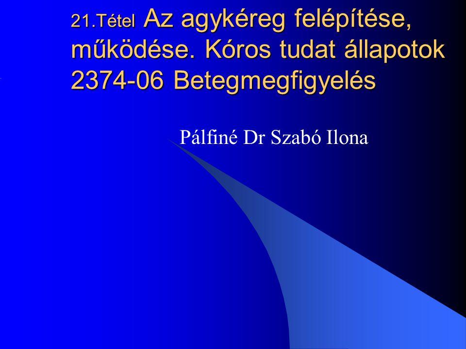 21.Tétel Az agykéreg felépítése, működése. Kóros tudat állapotok 2374-06 Betegmegfigyelés Pálfiné Dr Szabó Ilona