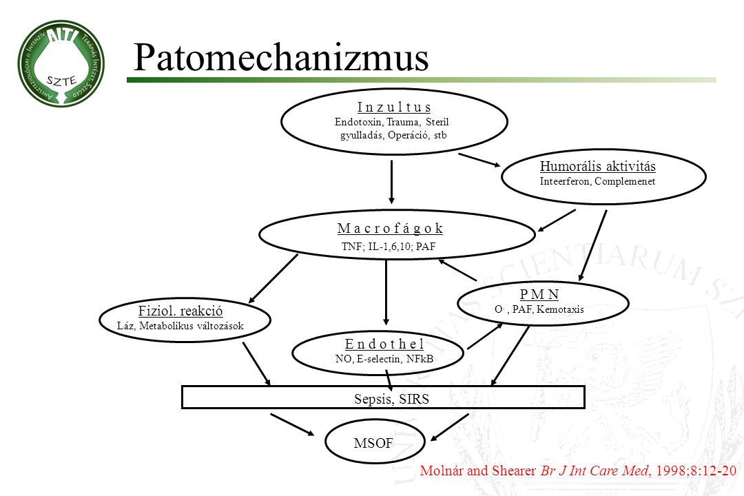 Patomechanizmus I n z u l t u s Endotoxin, Trauma, Steril gyulladás, Operáció, stb Humorális aktivitás Inteerferon, Complemenet M a c r o f á g o k TN