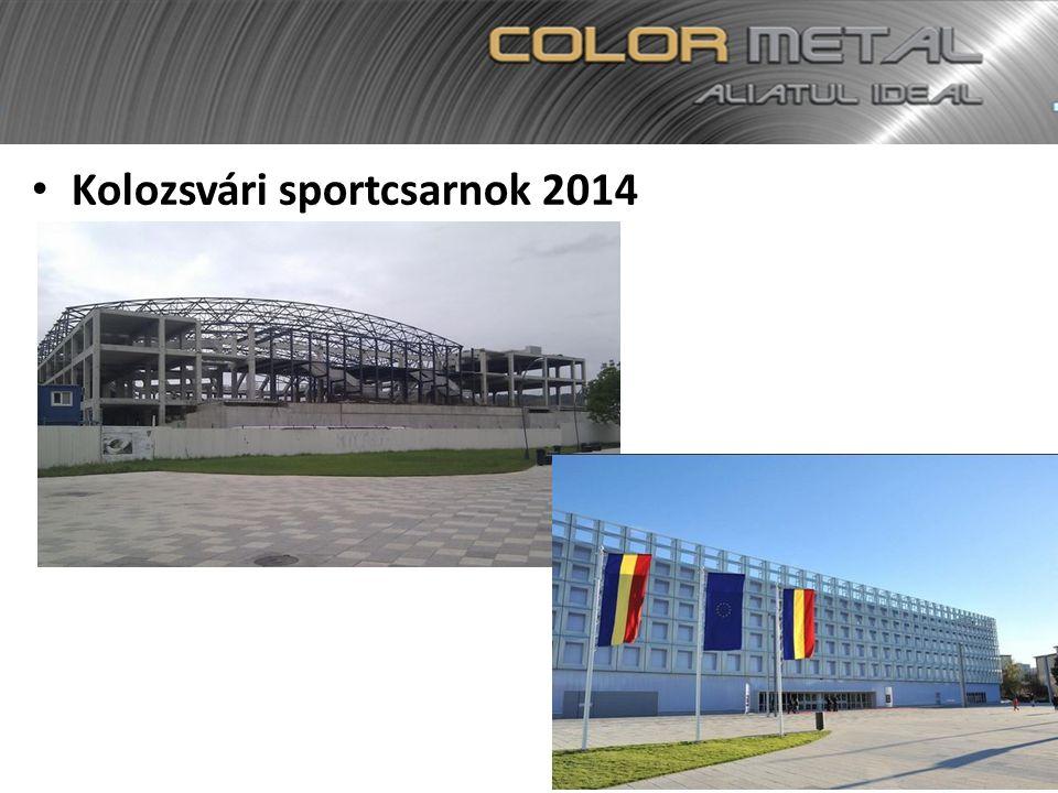 Kolozsvári sportcsarnok 2014