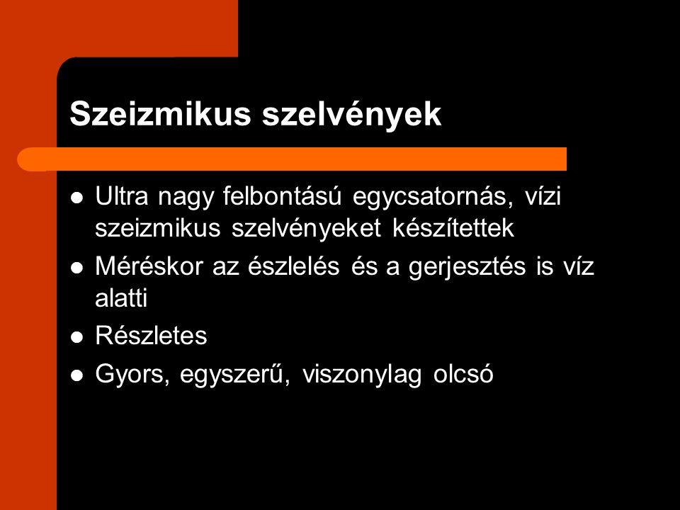 Szeizmikus szelvényekben Mederfenék: Sík Dűnékkel borított Kottyanókkal – eróziós gödrökkel – tarkított