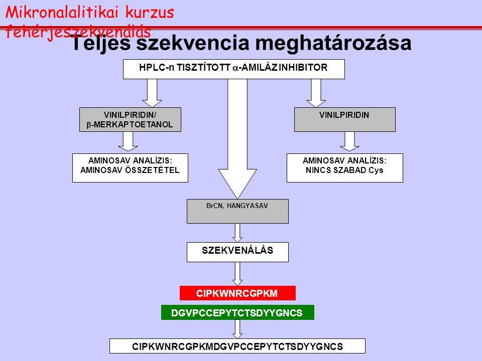 A szekvenálás eredményessége peptidek esetén Mikronalalitikai kurzus fehérjeszekvenálás