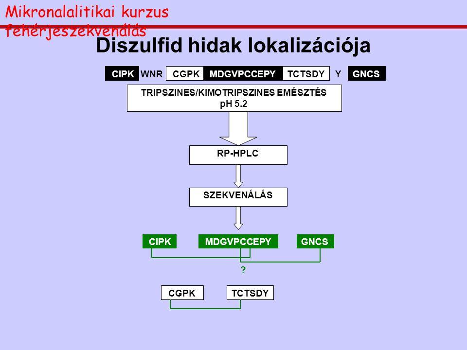 Teljes szekvencia meghatározása HPLC-n TISZTÍTOTT  -AMILÁZ INHIBITOR BrCN, HANGYASAV AMINOSAV ANALÍZIS: AMINOSAV ÖSSZETÉTEL VINILPIRIDIN/  -MERKAPTO