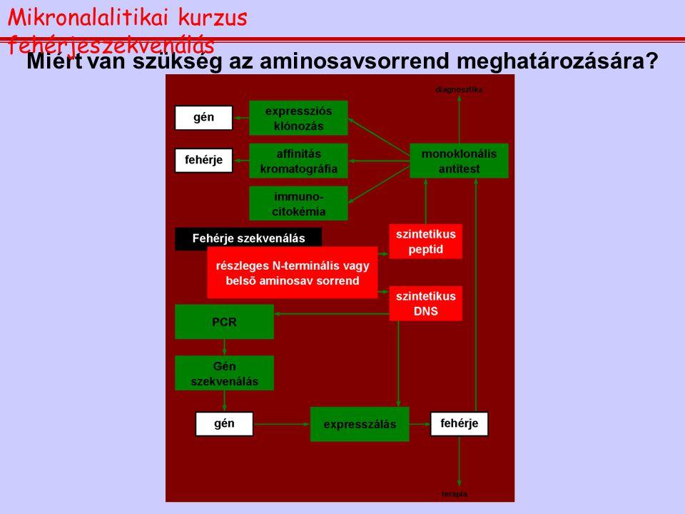 1.Miért van szükség az aminosav-sorrend meghatározására 2.A fenilizotiocianátos lebontás: az Edman reakció 3.A PTH-aminosavak azonosítása RP-HPLC-vel
