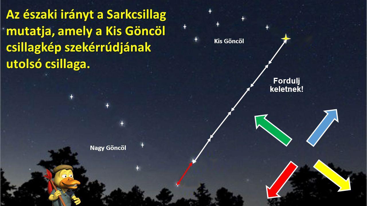 Fordulj keletnek! Az északi irányt a Sarkcsillag mutatja, amely a Kis Göncöl csillagkép szekérrúdjának utolsó csillaga. Nagy Göncöl Kis Göncöl