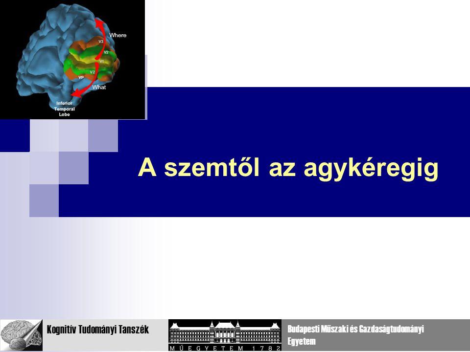 17 Kognitív Tudományi Tanszék Budapesti Műszaki és Gazdaságtudományi Egyetem A szemtől az agykéregig
