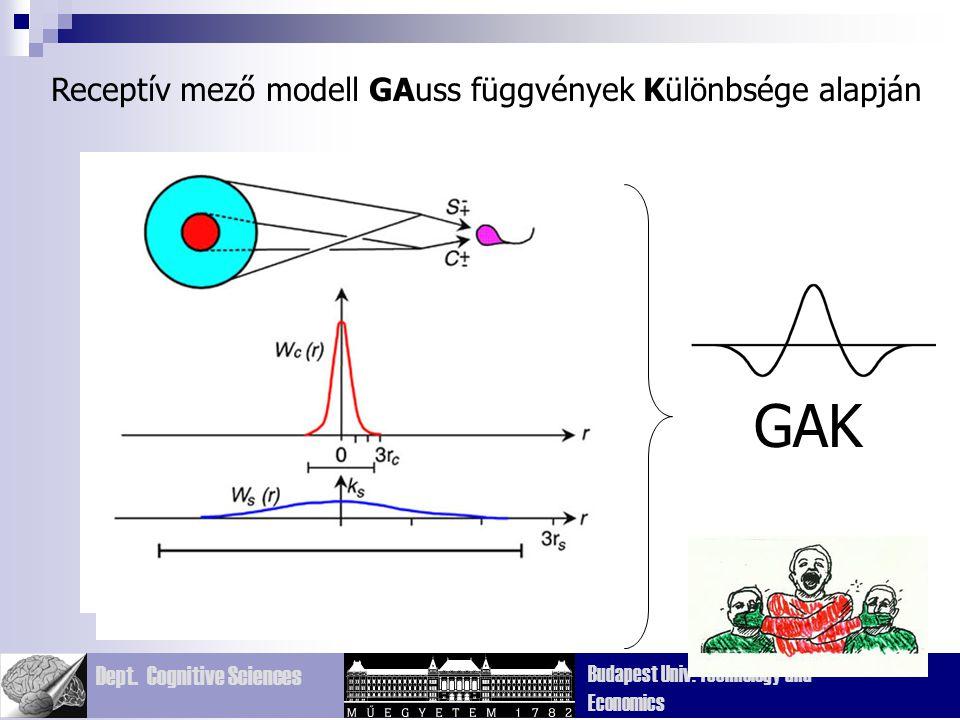 Dept. Cognitive Sciences Budapest Univ. Technology and Economics Receptív mező modell GAuss függvények Különbsége alapján GAK
