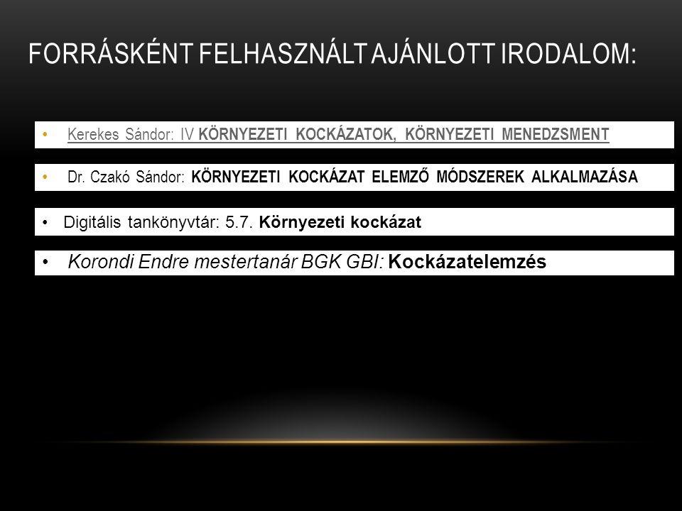 KOCKÁZAT-ÉRTÉKELÉSI SZEMPONTOK ( FORRÁS: ROWE, 1977) I.