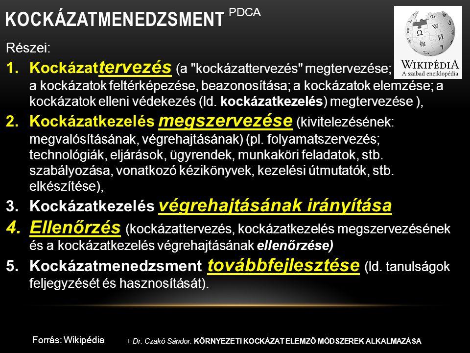 A KOCKÁZATMENEDZSMENT KÉT OLDALA REMEDIÁCIÓ jelentése: meggyógyítás