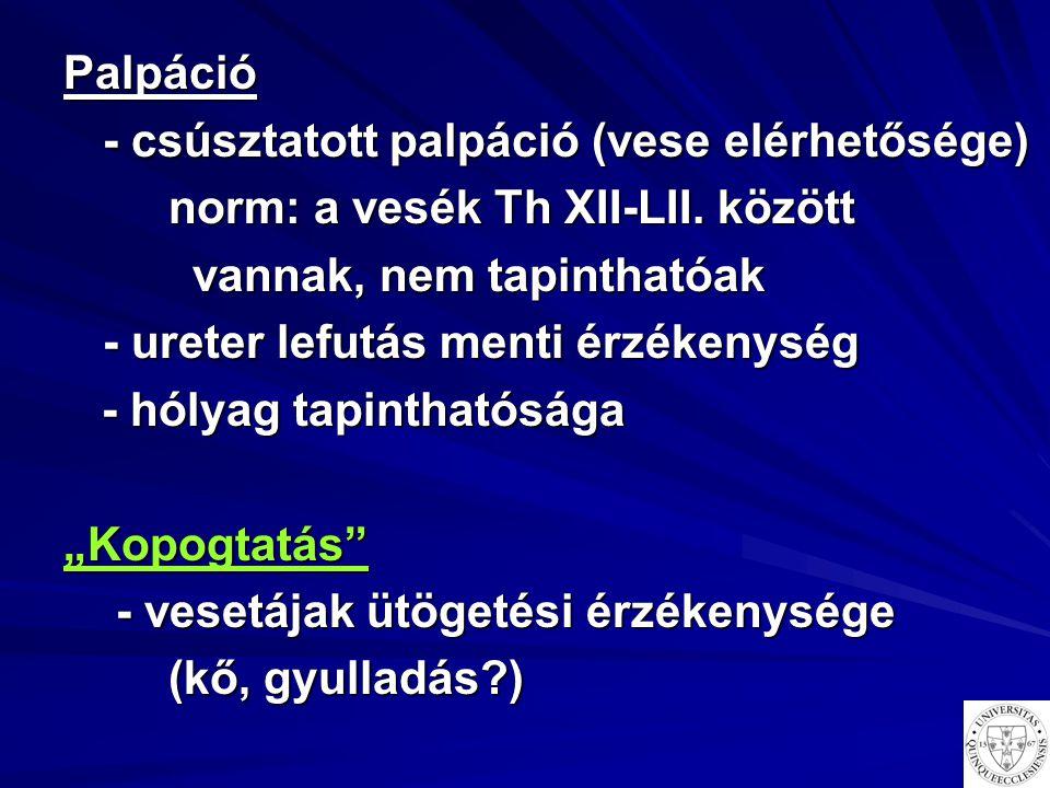 Palpáció - csúsztatott palpáció (vese elérhetősége) norm: a vesék Th XII-LII. között vannak, nem tapinthatóak vannak, nem tapinthatóak - ureter lefutá