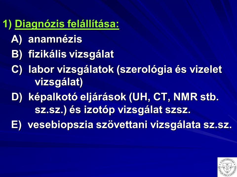 1) Diagnózis felállítása: A) ANAMNÉZIS A) ANAMNÉZIS a) jelen panaszok a) jelen panaszok b) előző betegségek, panaszok b) előző betegségek, panaszok c) környezeti tényezők, c) környezeti tényezők, vesekárosító rizikó faktorok vesekárosító rizikó faktorok d) általános kérdések d) általános kérdések e) családi anamnézis e) családi anamnézis A belgyógyászati vesebetegségek A belgyógyászati vesebetegségek általában tünetszegények, nem általában tünetszegények, nem fájnak, alattomosak fájnak, alattomosak