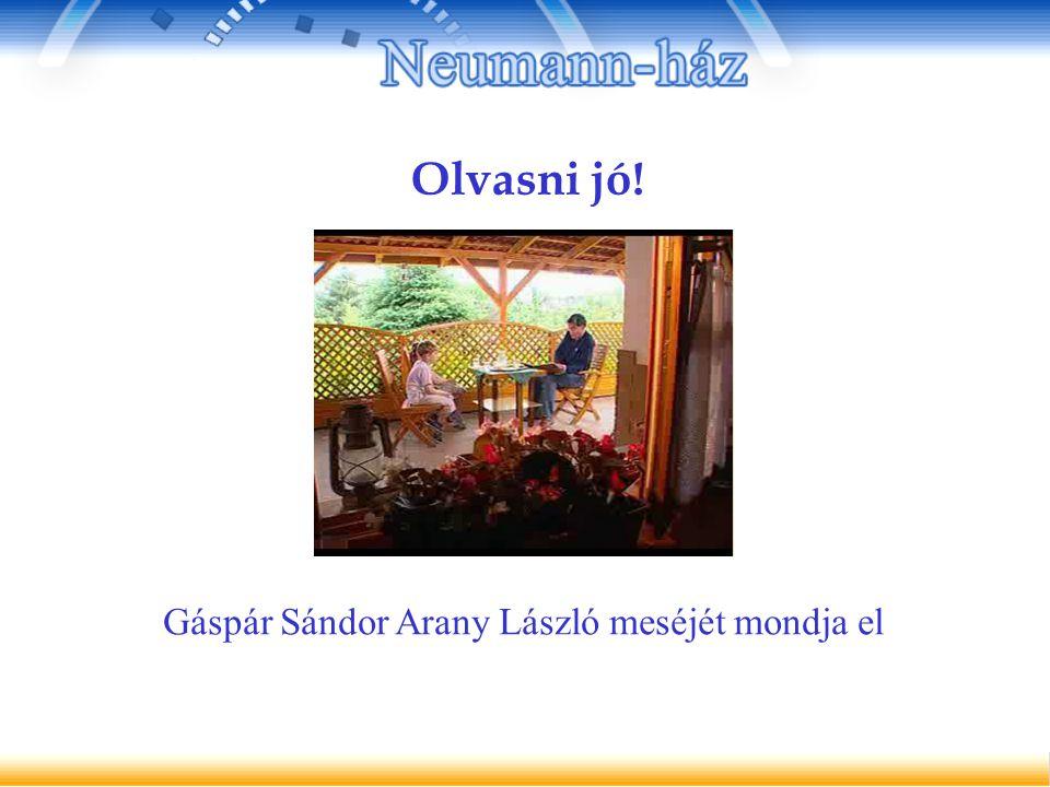 Gáspár Sándor Arany László meséjét mondja el