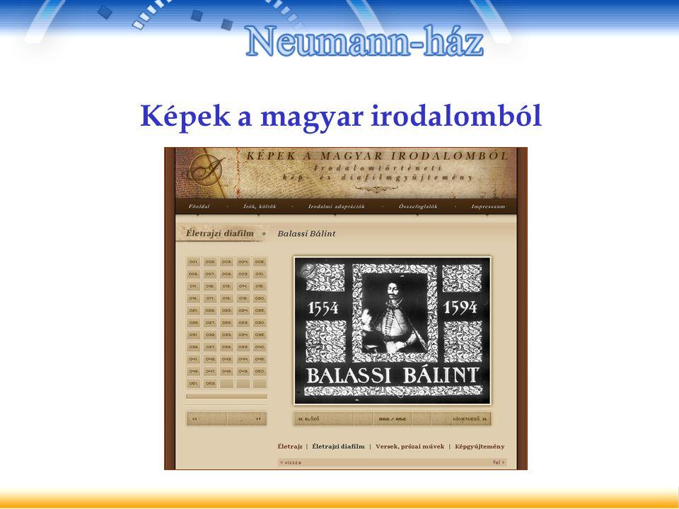 Képek a magyar irodalomból