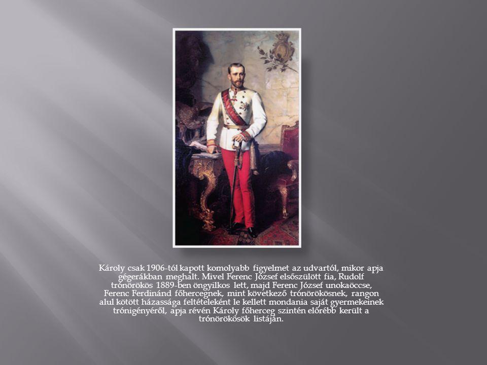 Károly csak 1906-tól kapott komolyabb figyelmet az udvartól, mikor apja gégerákban meghalt.