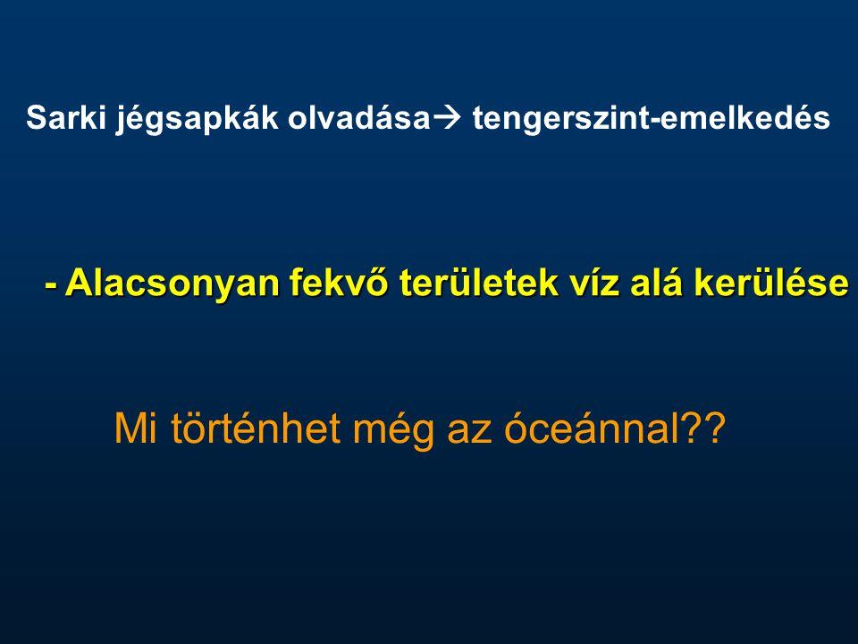- Alacsonyan fekvő területek víz alá kerülése Mi történhet még az óceánnal?? Sarki jégsapkák olvadása  tengerszint-emelkedés