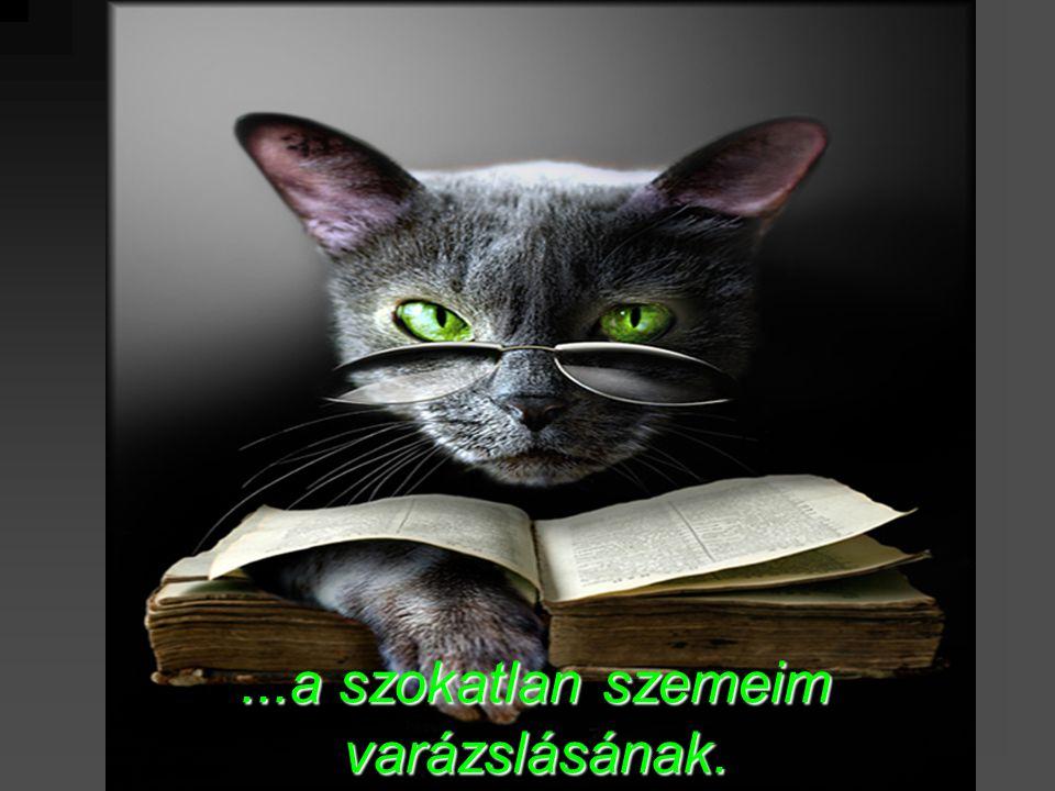 ...a szokatlan szemeim varázslásának.