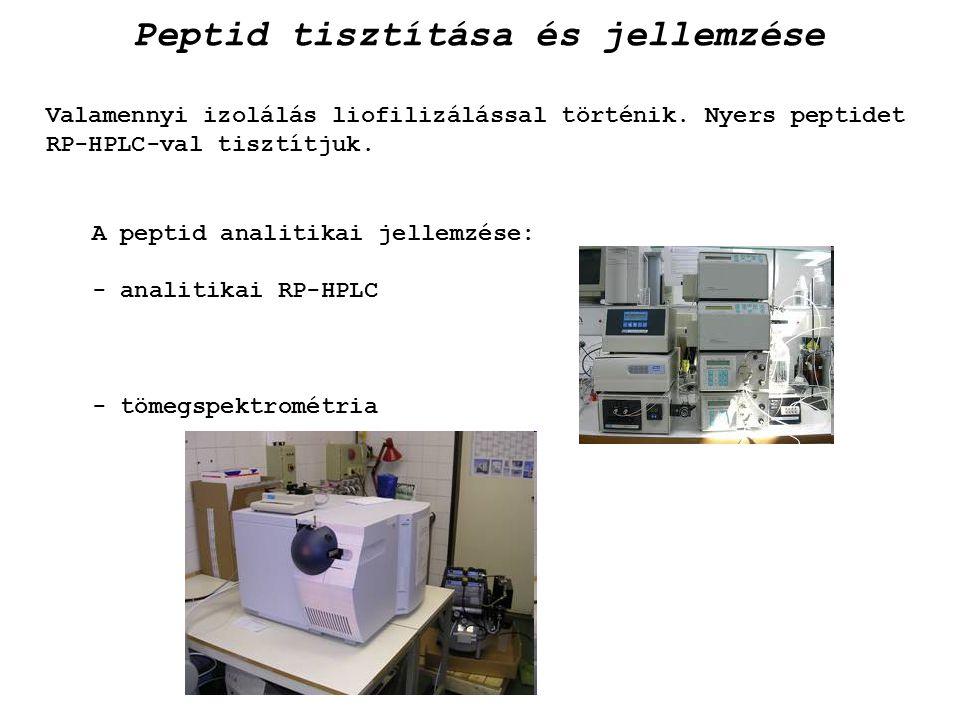 Peptid tisztítása és jellemzése Valamennyi izolálás liofilizálással történik. Nyers peptidet RP-HPLC-val tisztítjuk. A peptid analitikai jellemzése: -