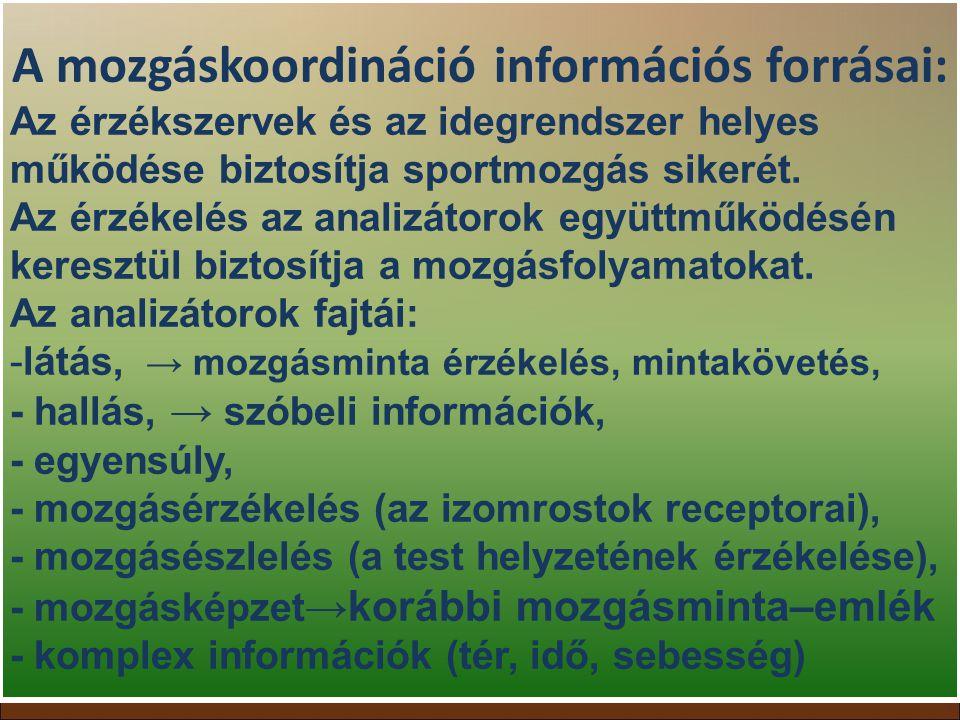 A mozgáskoordináció információs forrásai: Az érzékszervek és az idegrendszer helyes működése biztosítja sportmozgás sikerét. Az érzékelés az analizáto