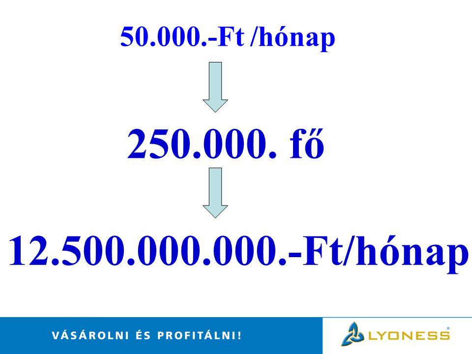 50.000.-Ft /hónap 250.000. fő 12.500.000.000.-Ft/hónap