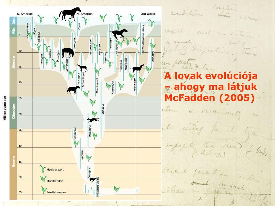 A lovak evolúciója – ahogy ma látjuk McFadden (2005)