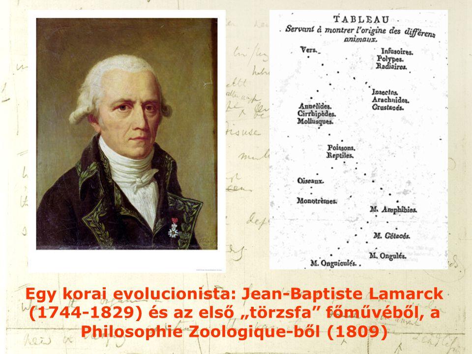 """Egy korai evolucionista: Jean-Baptiste Lamarck (1744-1829) és az első """"törzsfa"""" főművéből, a Philosophie Zoologique-ből (1809)"""