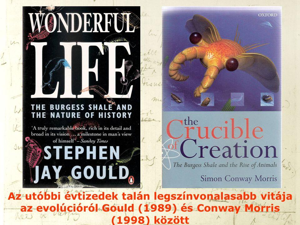 Az utóbbi évtizedek talán legszínvonalasabb vitája az evolúcióról Gould (1989) és Conway Morris (1998) között