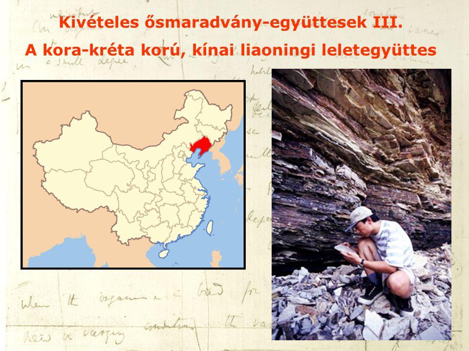 Kivételes ősmaradvány-együttesek III. A kora-kréta korú, kínai liaoningi leletegyüttes