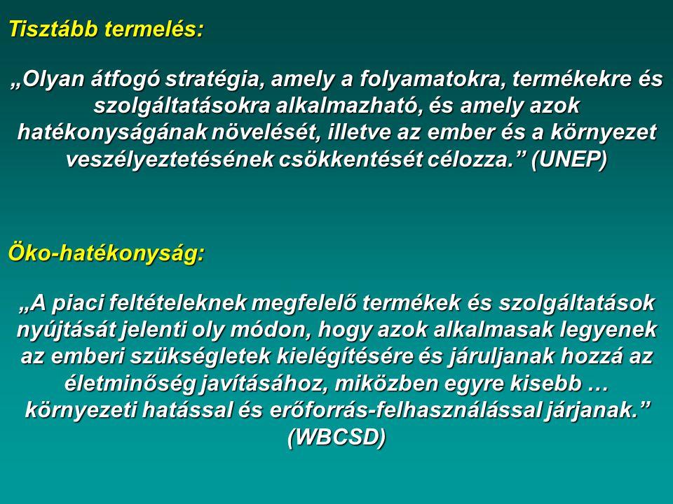 MANUÁLIS MÓDSZER - Eco-indicator 99 Hatásbecslés – ISO 14042 Forrás: Dr.