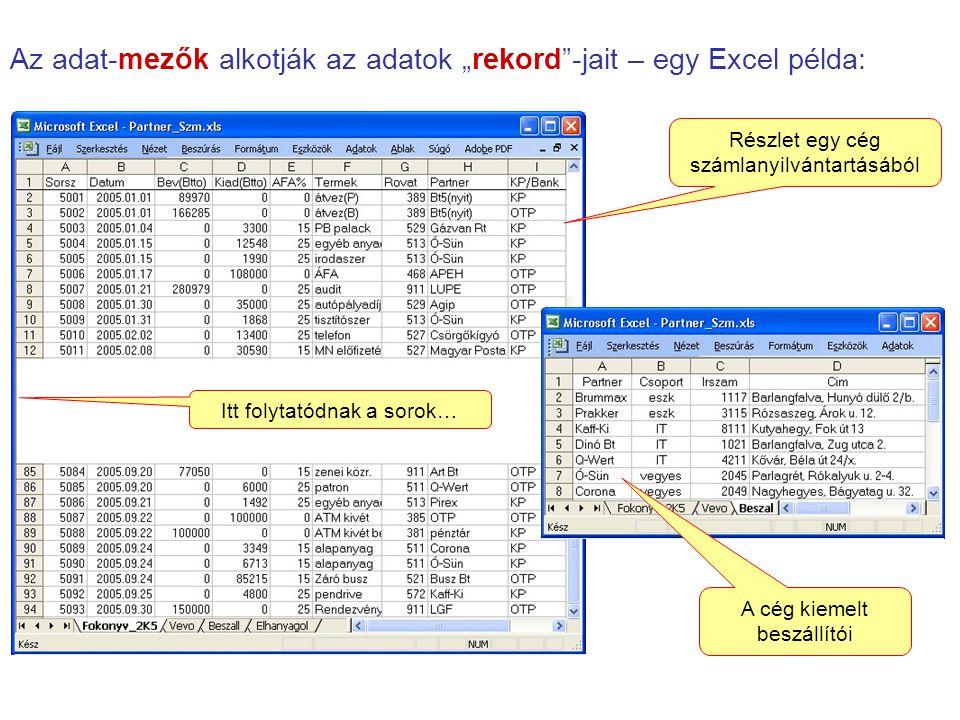 """Az adat-mezők alkotják az adatok """"rekord""""-jait – egy Excel példa: Itt folytatódnak a sorok… Részlet egy cég számlanyilvántartásából A cég kiemelt besz"""