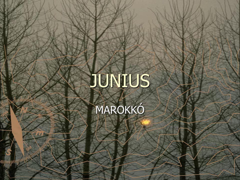 JUNIUS MAROKKÓ