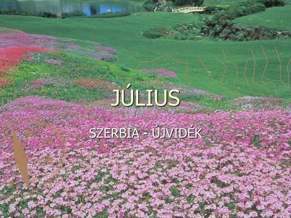 JÚLIUS SZERBIA - ÚJVIDÉK