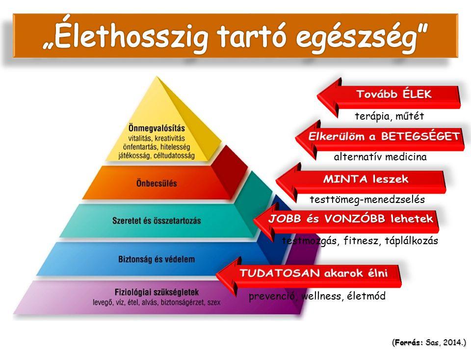 prevenció, wellness, életmód testmozgás, fitnesz, táplálkozás testtömeg-menedzselés alternatív medicina terápia, műtét (Forrás: Sas, 2014.) Az egészsé