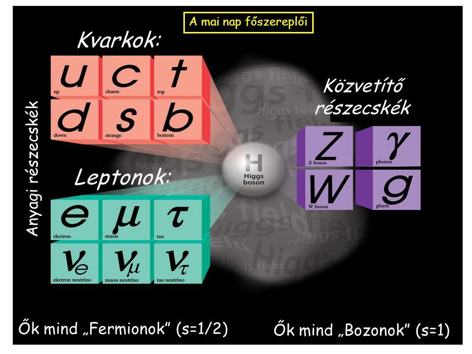 """Kvarkok: Leptonok: Közvetítő részecskék A mai nap főszereplői Anyagi részecskék Ők mind """"Fermionok (s=1/2) Ők mind """"Bozonok (s=1)"""